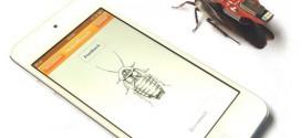 Come controllare uno scarafaggio (vivo e vegeto) con il proprio smartphone